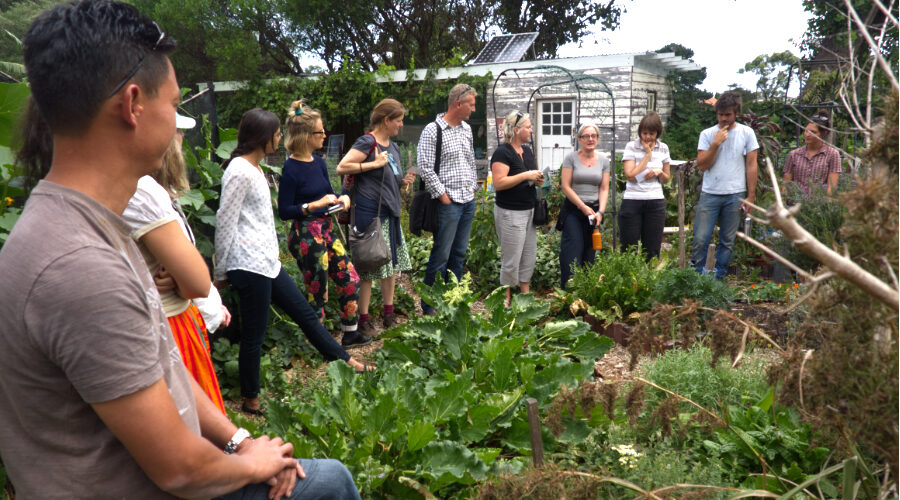 Education an established role for community gardens