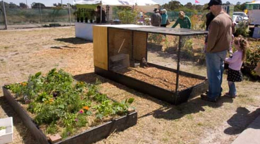 A combined, rotational egg and vegetable gardening system