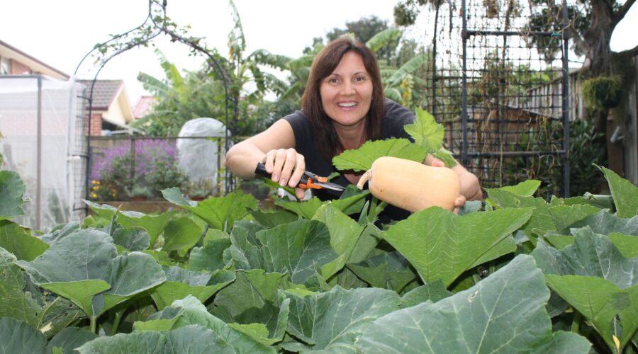 Healing gardens at Perth City Farm