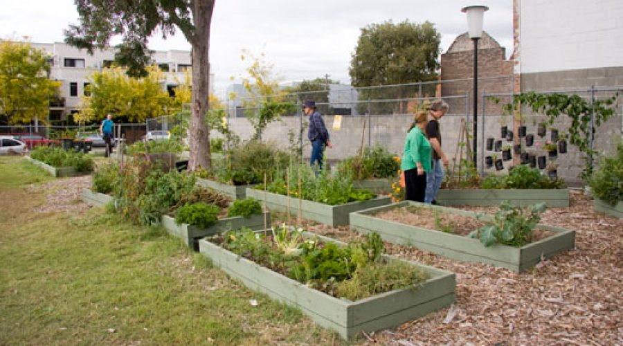 Garden tour two: more luxuriant gardens of the inner city