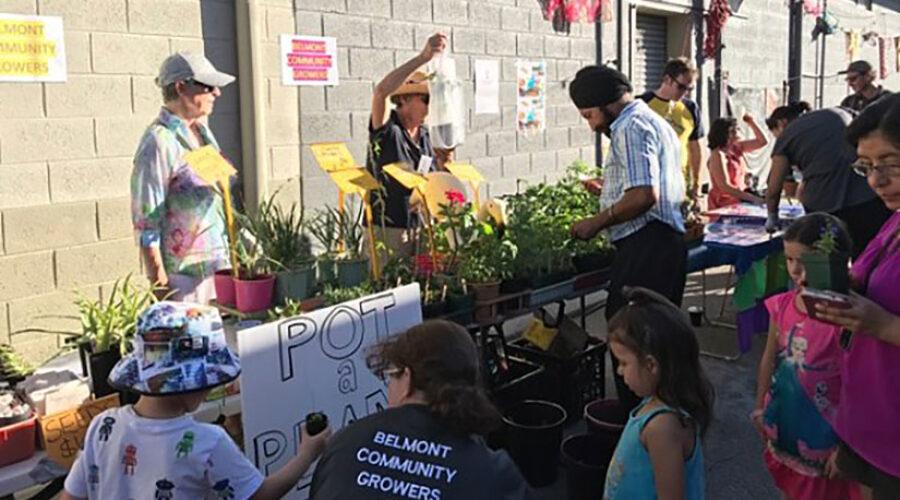 Neat idea — pot a plant for kids