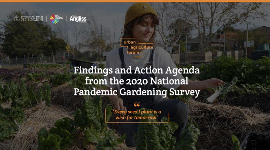 The Pandemic Gardening Survey Report
