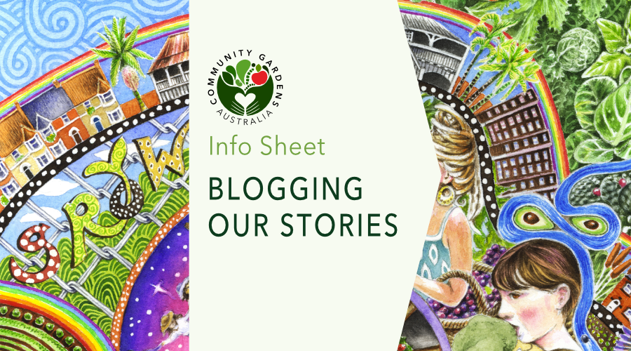 INFO SHEET: Blogging our stories